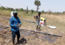 Reactions trail worst drought in Madagascar