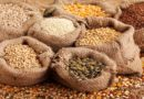 Global conference explores science-based pathways towards sustainable food systems