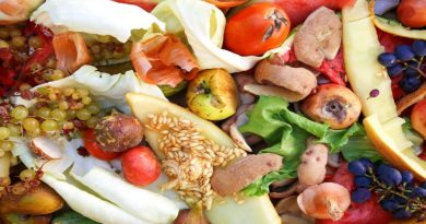 International Day of Awareness on Food Loss and Waste: UN calls for increased action